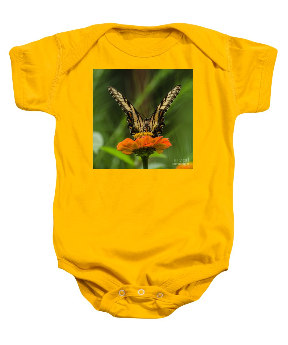 Insect Baby Onesie featuring the photograph Nature Stain Glass by Donna Brown