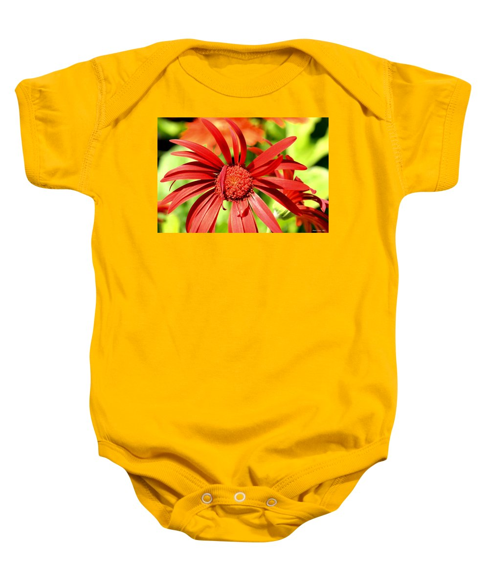 One Lazy Petal Baby Onesie featuring the photograph One Lazy Petal by Maria Urso