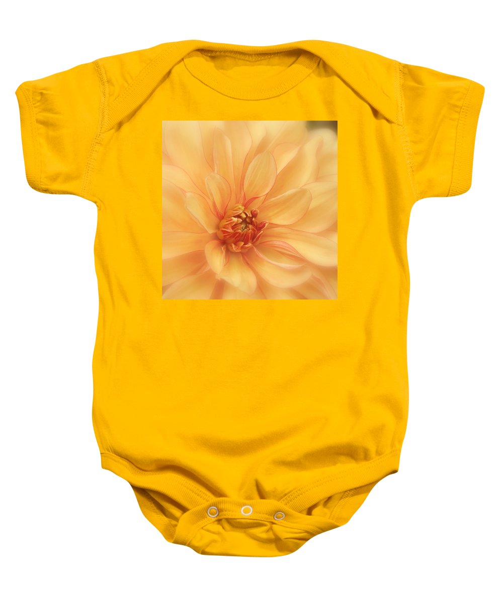 Orange Dahlia Baby Onesie featuring the photograph Peaches And Cream by Kim Hojnacki