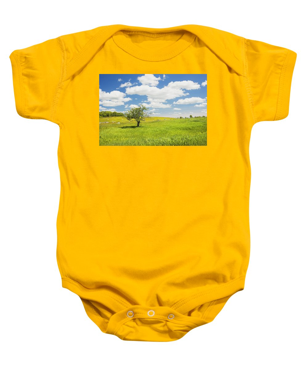 Field Baby Onesie featuring the photograph Single Apple Tree In Maine Blueberry Field by Keith Webber Jr