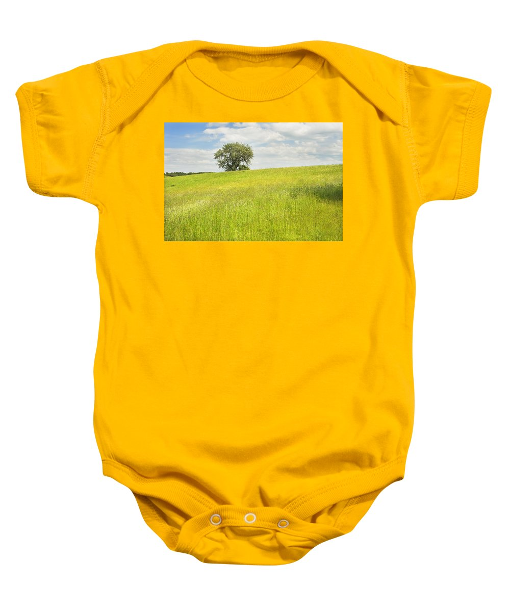 Field Baby Onesie featuring the photograph Single Apple Tree In Maine Hay Field by Keith Webber Jr