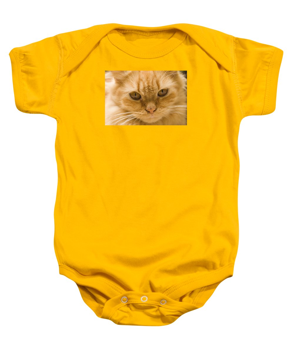 Domesticate Baby Onesie featuring the photograph Skc 1483 Unconcerned Stare by Sunil Kapadia