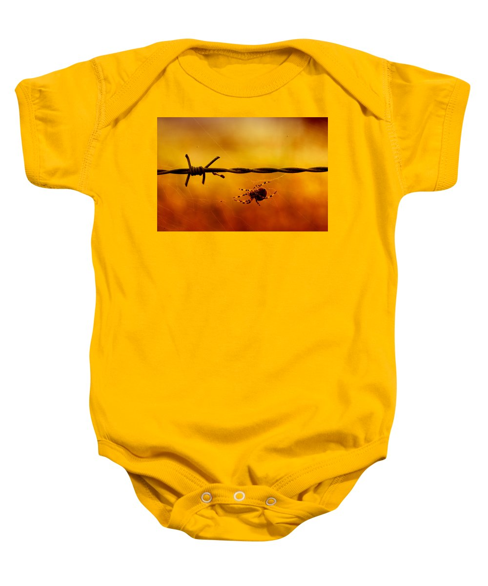 Animal Baby Onesie featuring the photograph Spider In A Web by TouTouke A Y