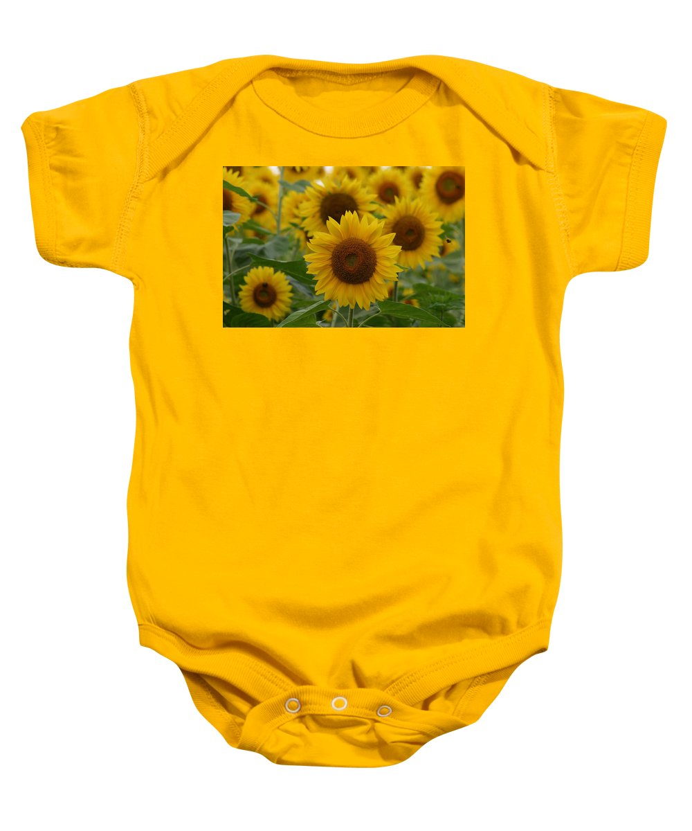 Denyse Duhaime Photography Baby Onesie featuring the photograph Sunflowers At The Farm by Denyse Duhaime