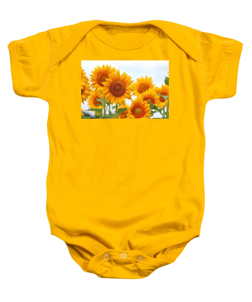 Flowers Baby Onesie featuring the photograph Sunflowers by Gayle Miller