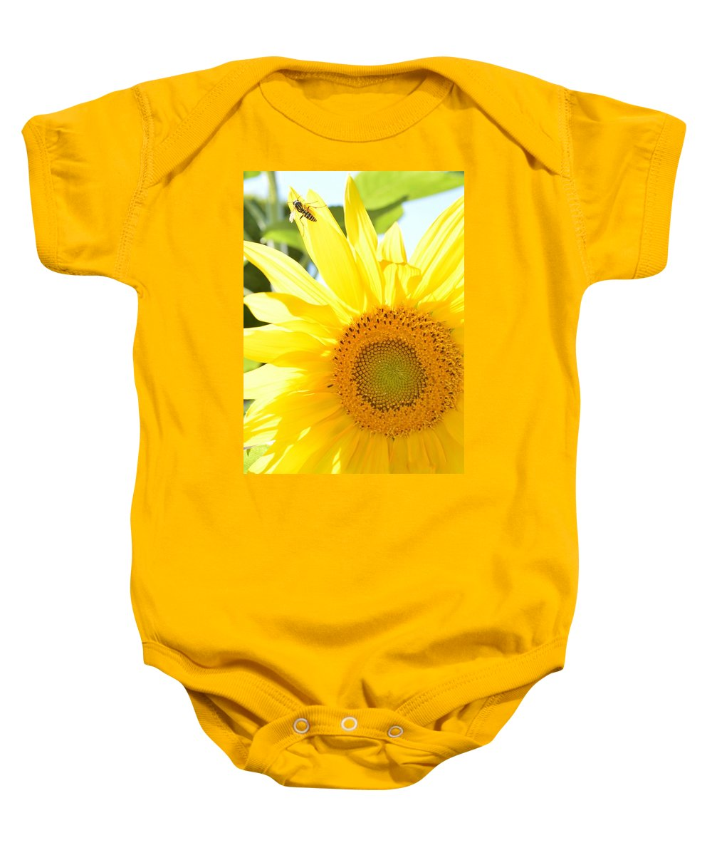 Sunflower Baby Onesie featuring the photograph Sunflower by Terri Louise