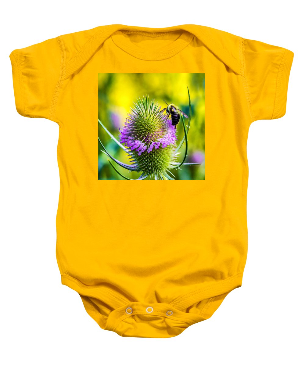 Flower Baby Onesie featuring the photograph Teasel And Bee by Steve Harrington