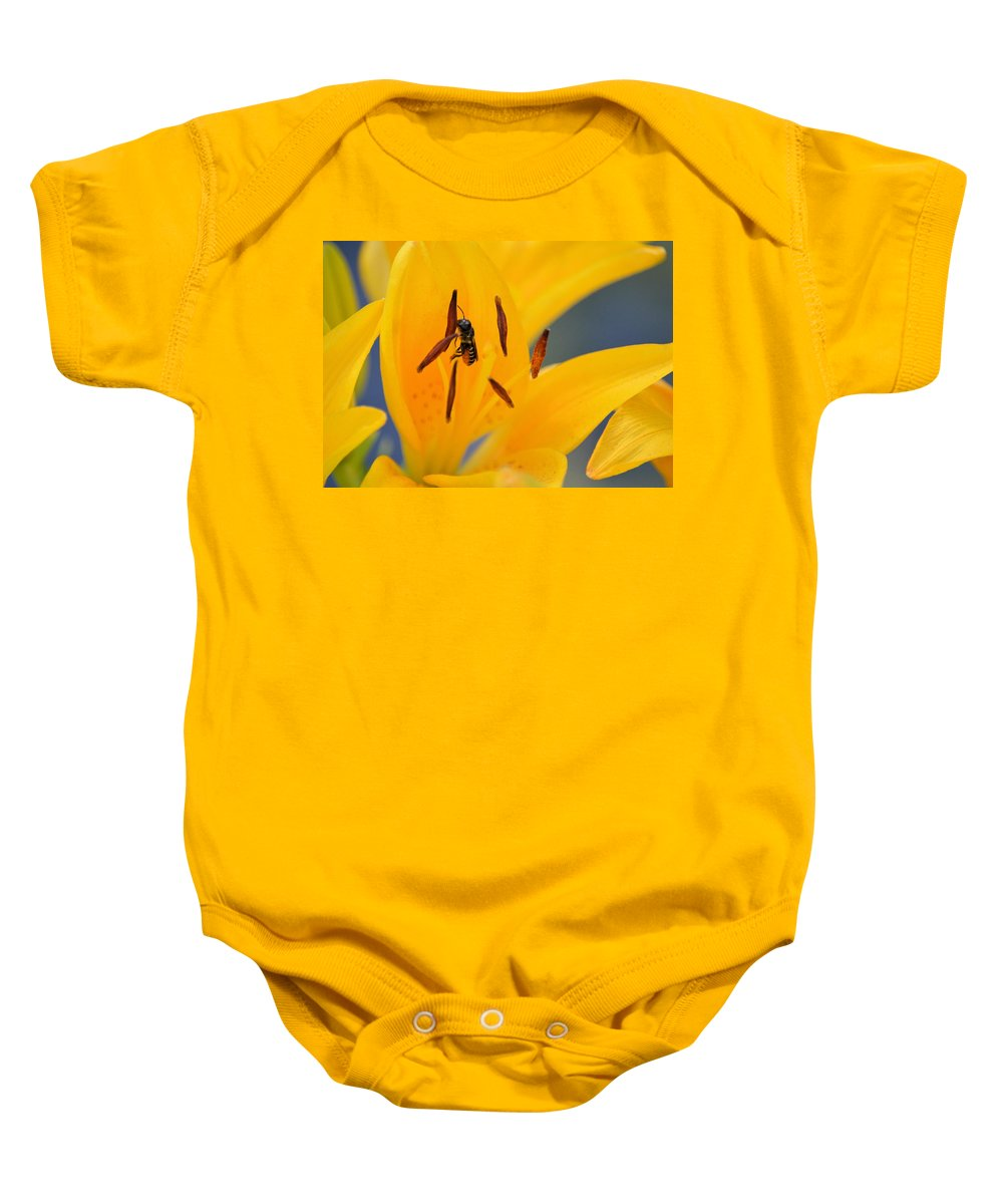 Bee Baby Onesie featuring the photograph The Collector 7456 by Bonfire Photography