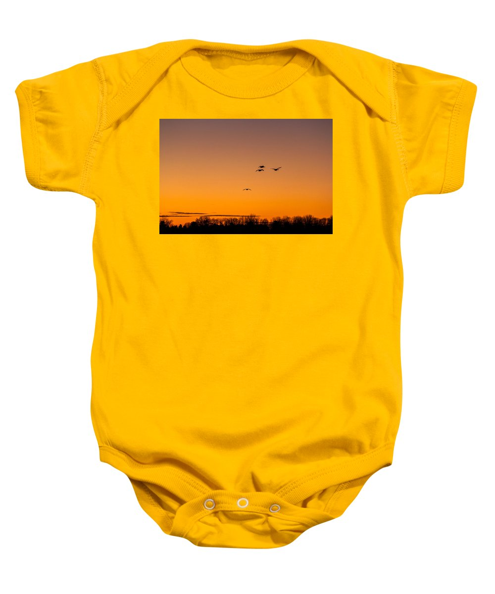 Goose Baby Onesie featuring the photograph The Flock Grows by Thomas Sellberg
