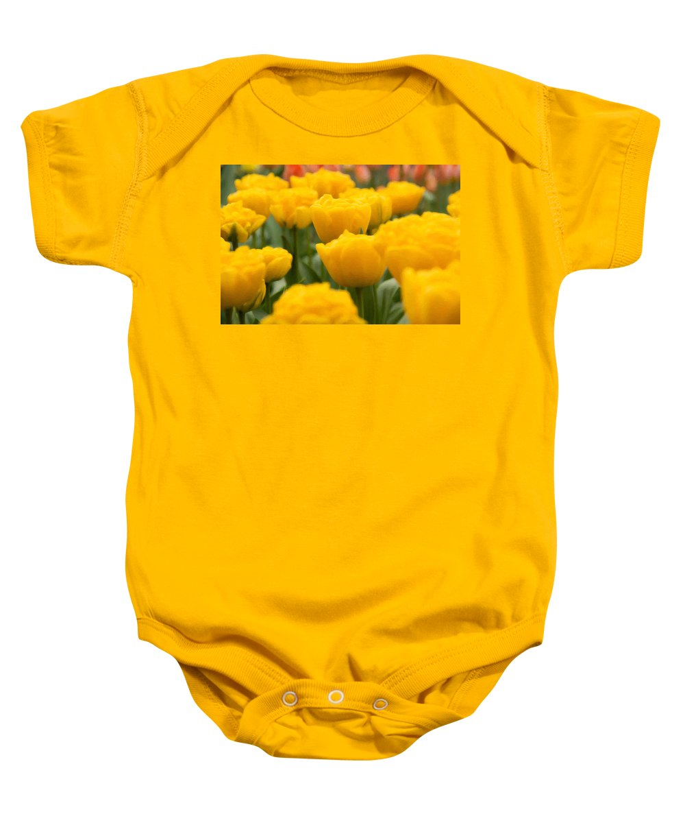 Beauty In Nature Baby Onesie featuring the photograph Tulips 29 by Ingrid Smith-Johnsen