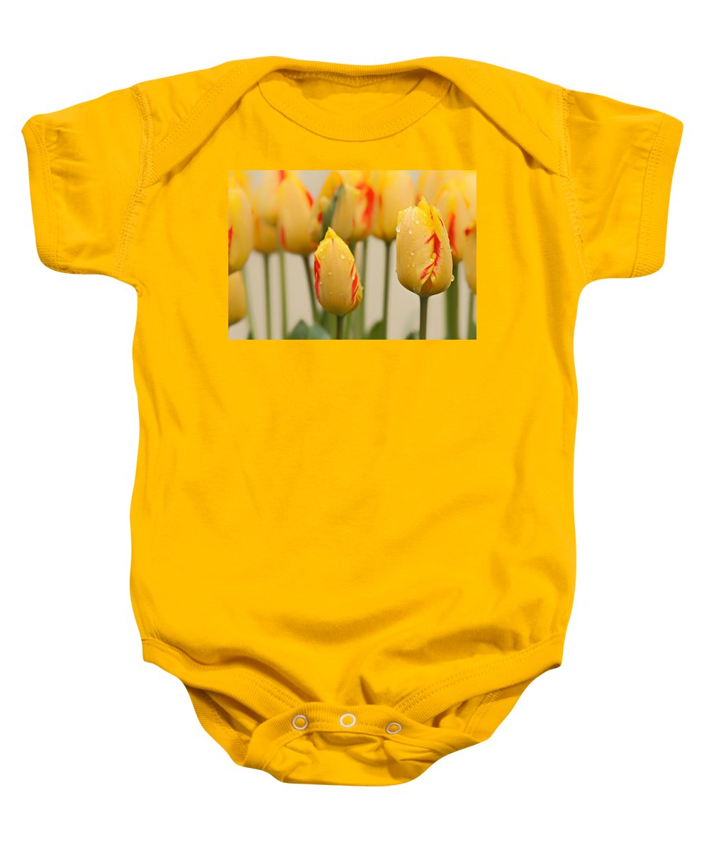 Beauty In Nature Baby Onesie featuring the photograph Tulips 6 by Ingrid Smith-Johnsen