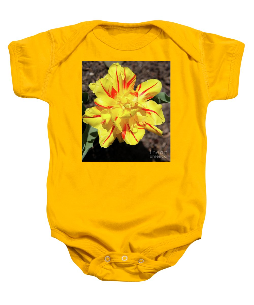 Tulip Baby Onesie featuring the photograph Yellow And Red Tulip by Christiane Schulze Art And Photography