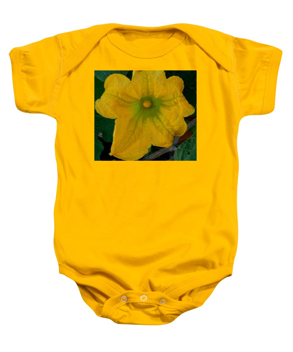 Abstract Baby Onesie featuring the photograph Squash Blossom by Lenore Senior