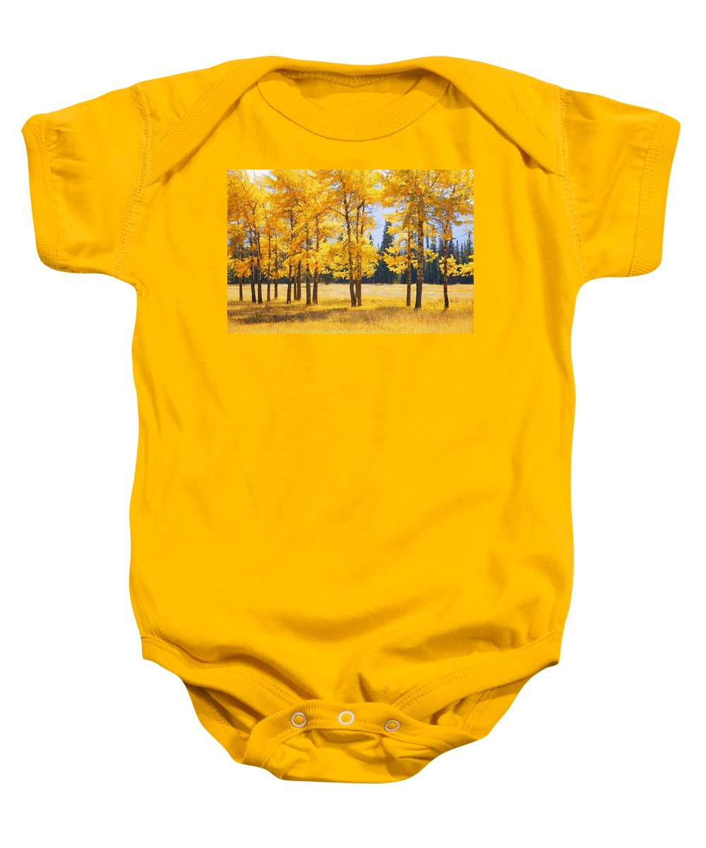 Autumn Colors Baby Onesie featuring the photograph Trees In Autumn by Don Hammond