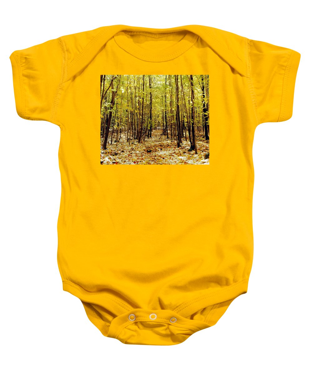Autumn Colors Baby Onesie featuring the photograph Autumn Trees by David Chapman