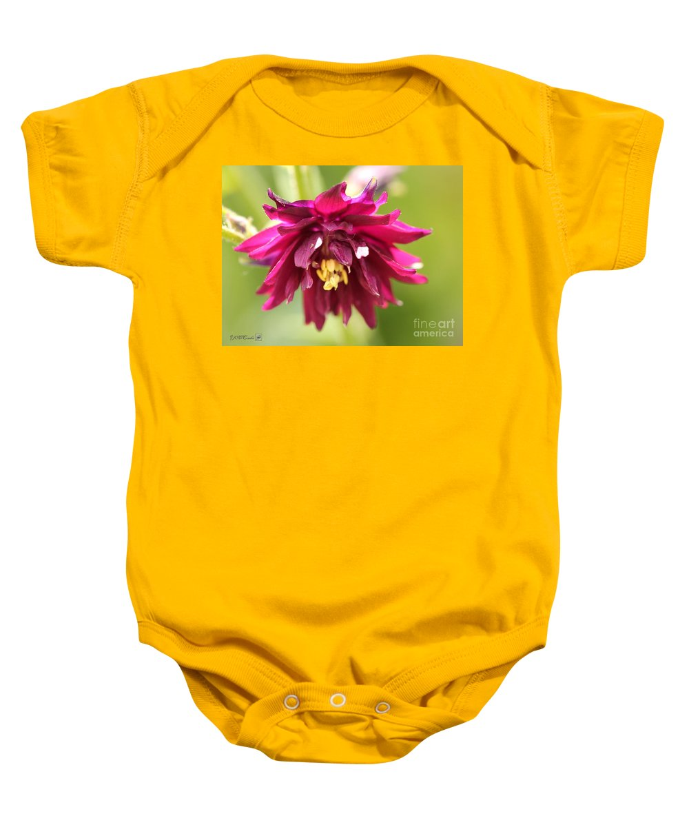 Columbine Baby Onesie featuring the photograph Columbine Named Miss Mi Huish by J McCombie