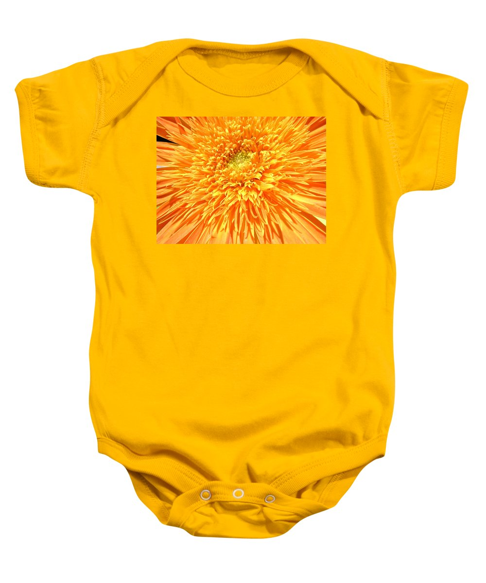 Gerbera Photographs Baby Onesie featuring the photograph 6226c by Kimberlie Gerner
