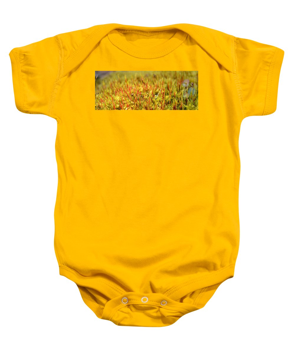 Moss Baby Onesie featuring the photograph A Forest Of Moss II by JD Grimes