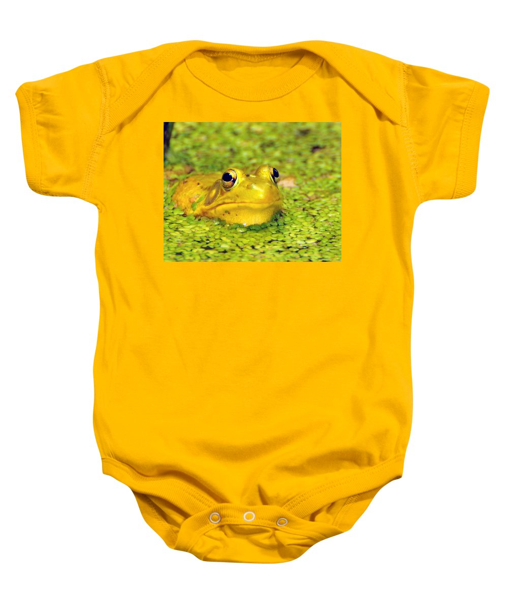 Yellow Bullfrog Baby Onesie featuring the photograph A Yellow Bullfrog by Paul Ward