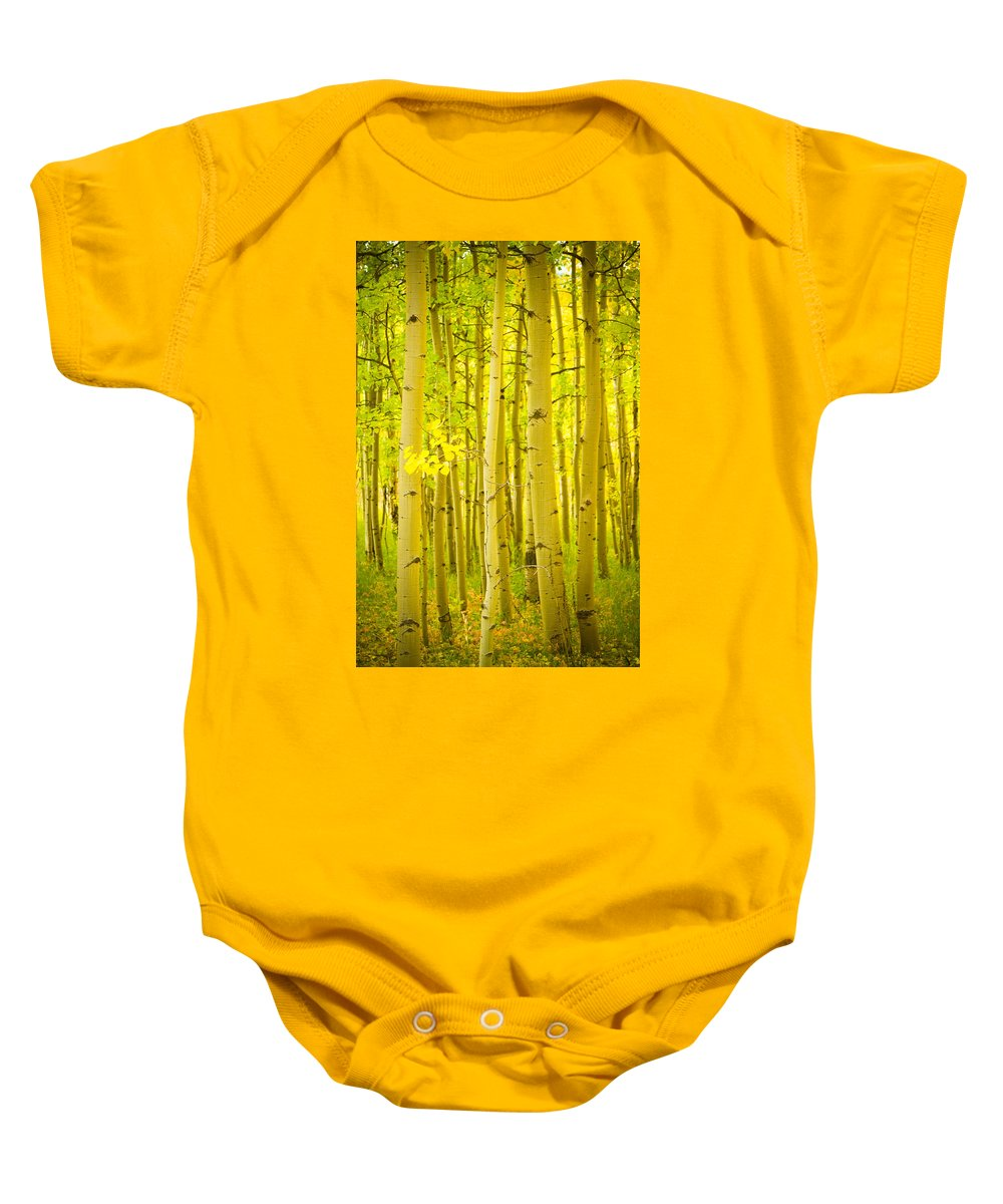 Autumn Baby Onesie featuring the photograph Autumn Aspens Vertical Image by James BO Insogna