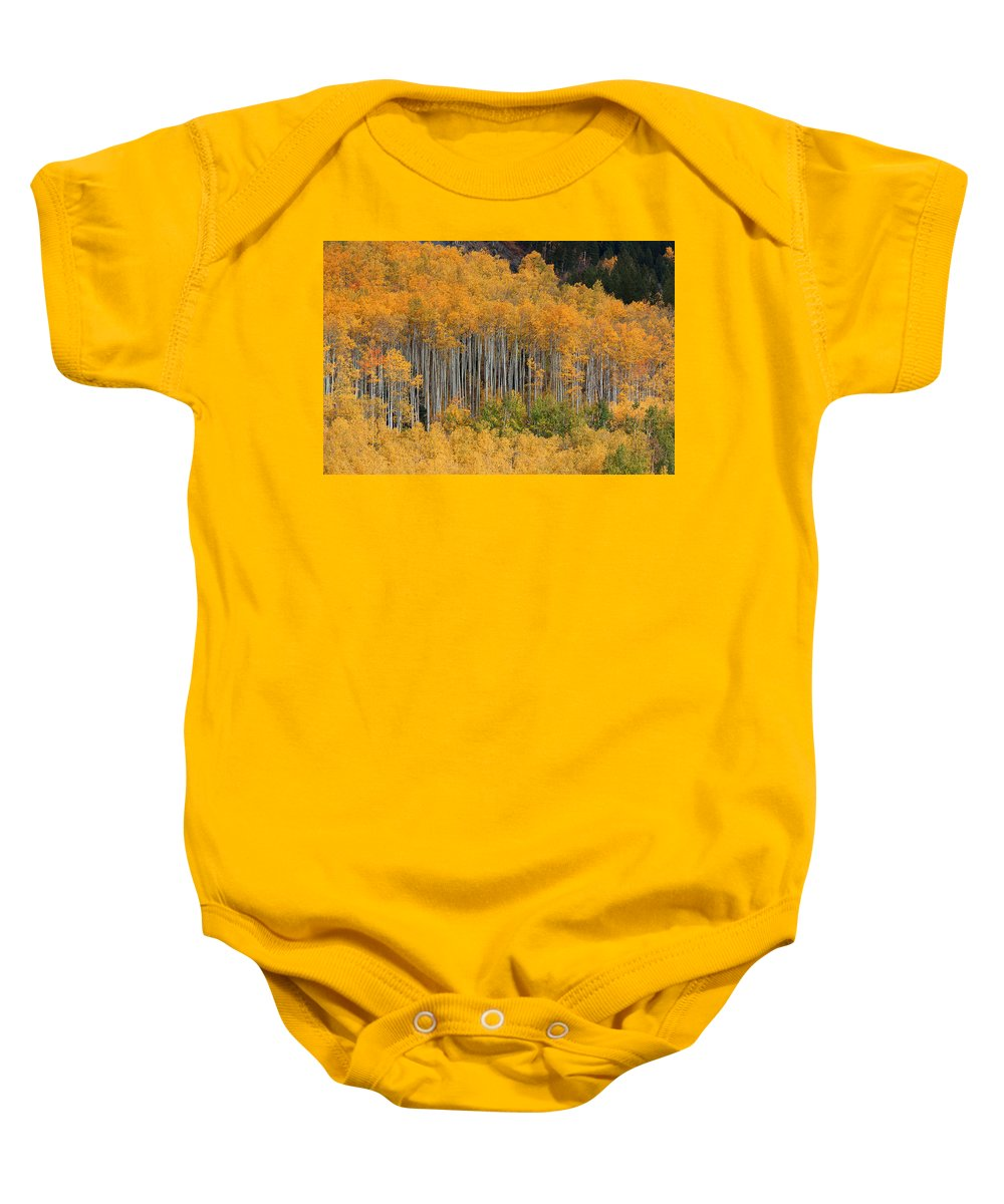 Autumn Colors Photograph Baby Onesie featuring the photograph Autumn Curtain by Jim Garrison