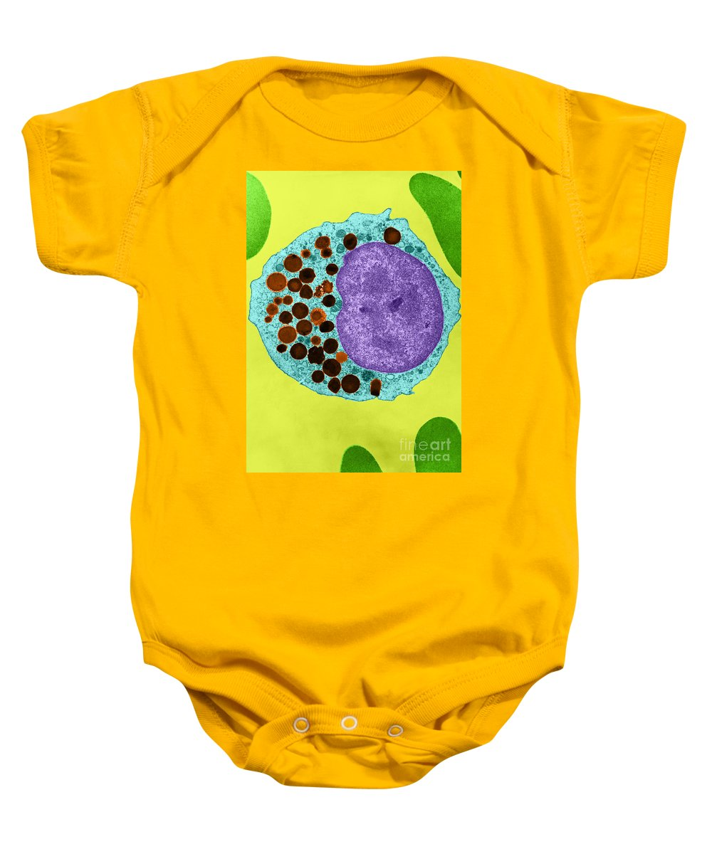 Azurophil Baby Onesie featuring the photograph Azurophils In Myelocyte, Tem by Don W. Fawcett