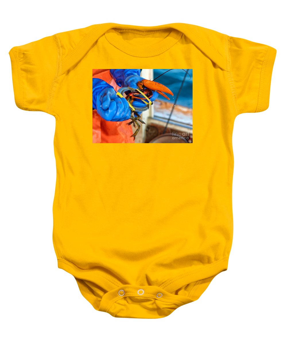 Fish Pier Baby Onesie featuring the photograph Banding An American Lobster In Chatham On Cape Cod by Matt Suess