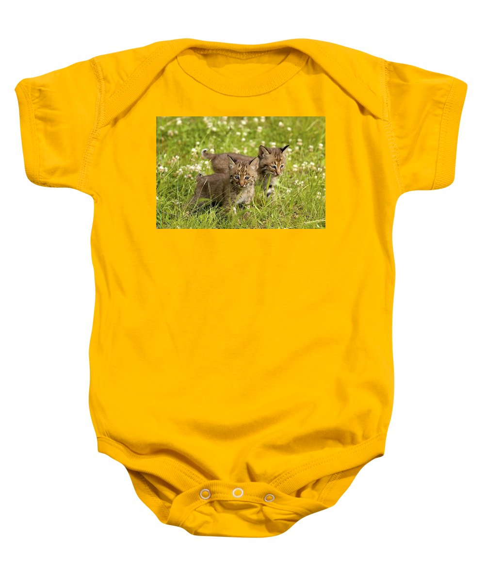 Outdoors Baby Onesie featuring the photograph Bobcat Kittens by John Pitcher
