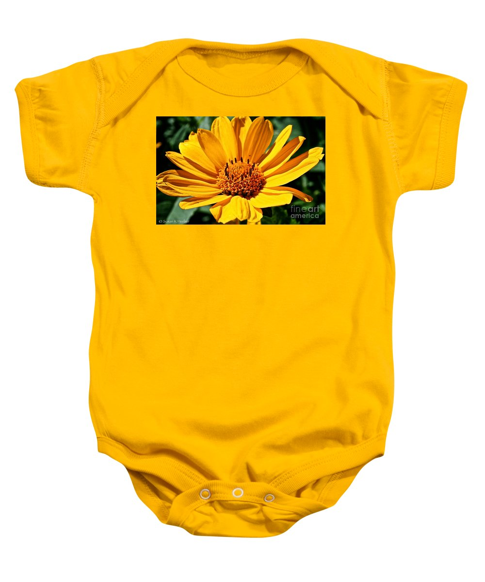 Plant Baby Onesie featuring the photograph Cheddar by Susan Herber