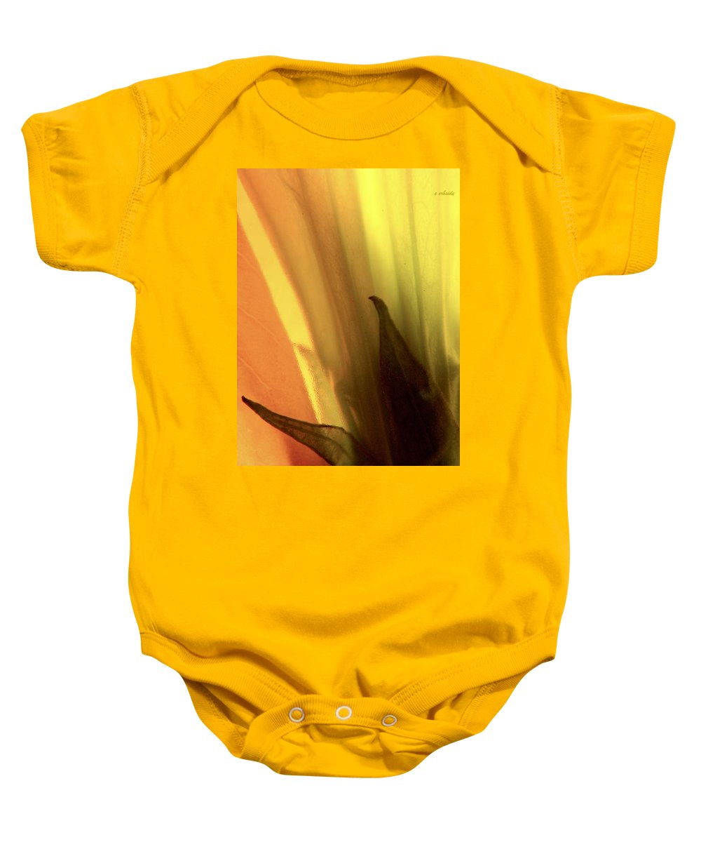 Datura Baby Onesie featuring the photograph Datura Transparency by Chris Berry