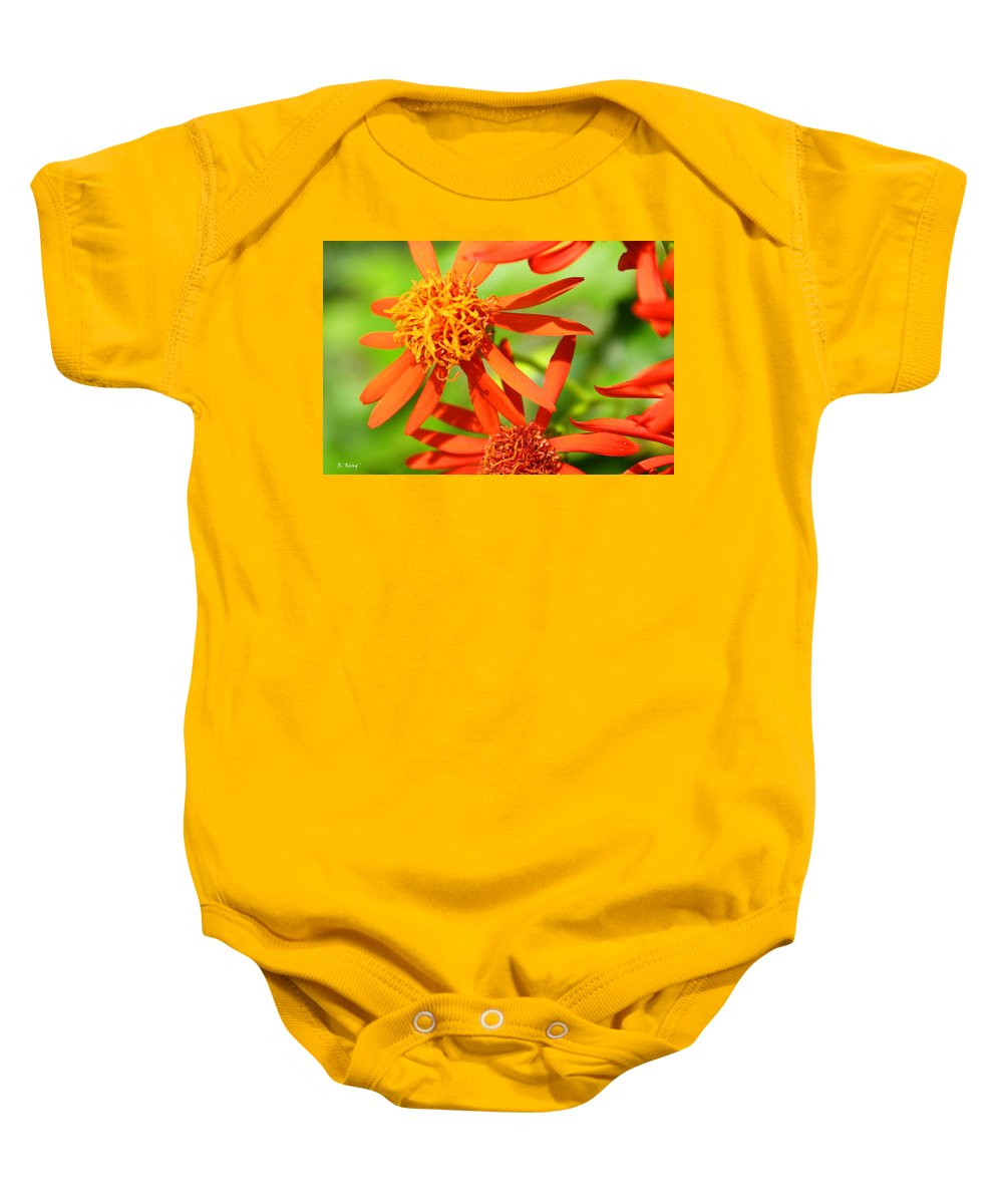 Roena King Baby Onesie featuring the photograph Fall Orange Flowers by Roena King
