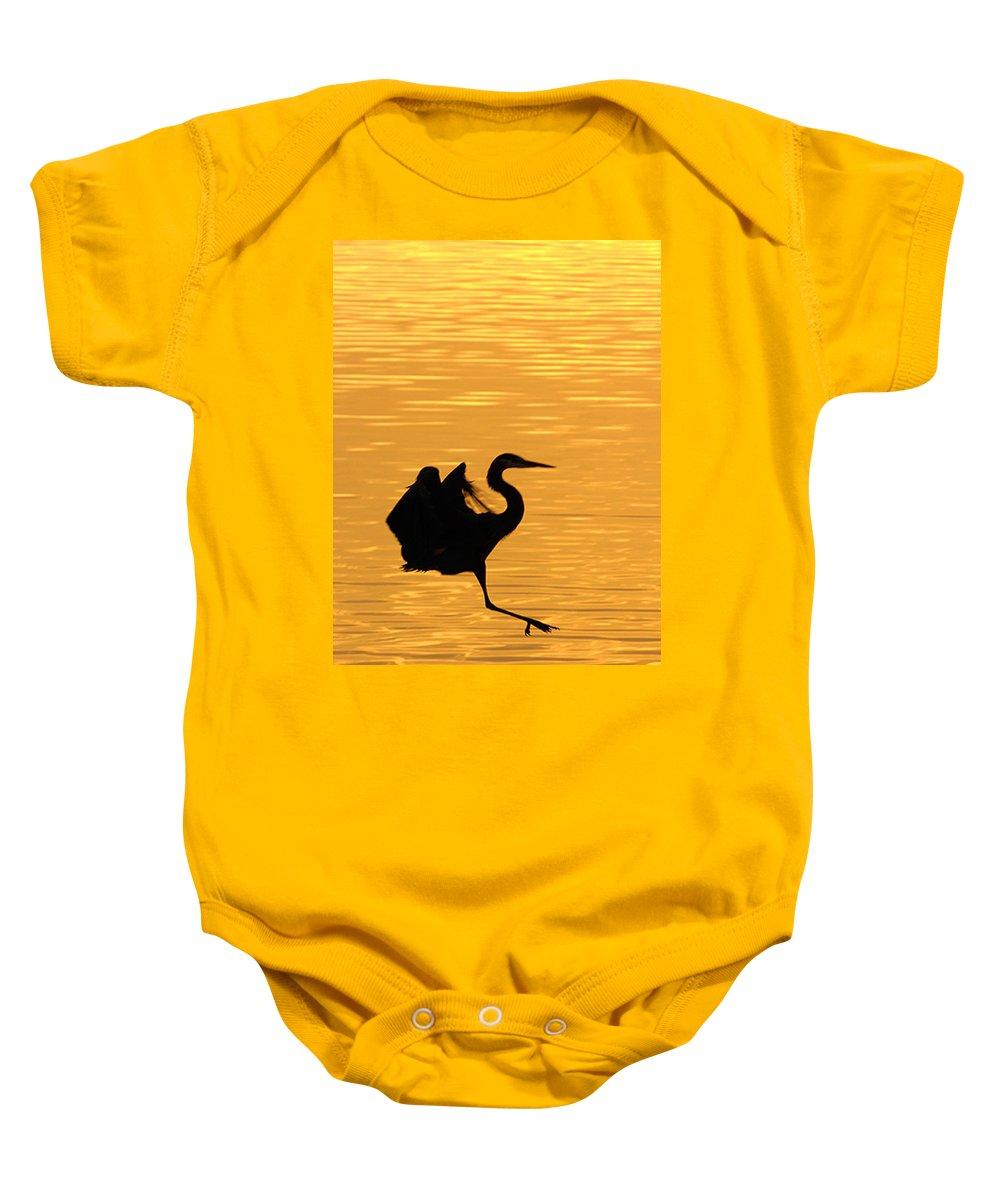 Great Blue Heron Baby Onesie featuring the photograph Great Blue Heron Landing In Golden Light by Randall Branham