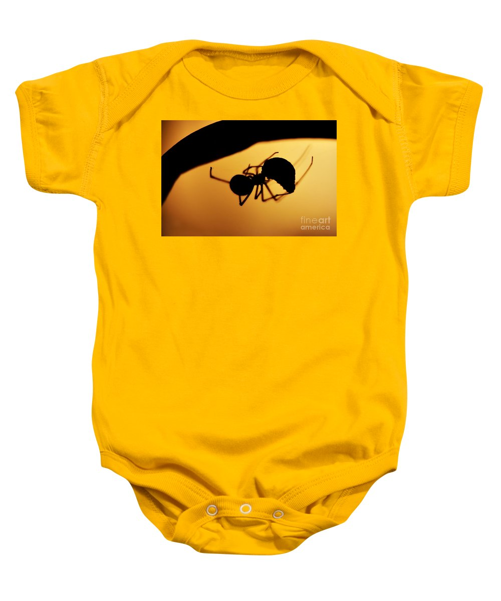 Spider Baby Onesie featuring the photograph Hunter by Michal Boubin