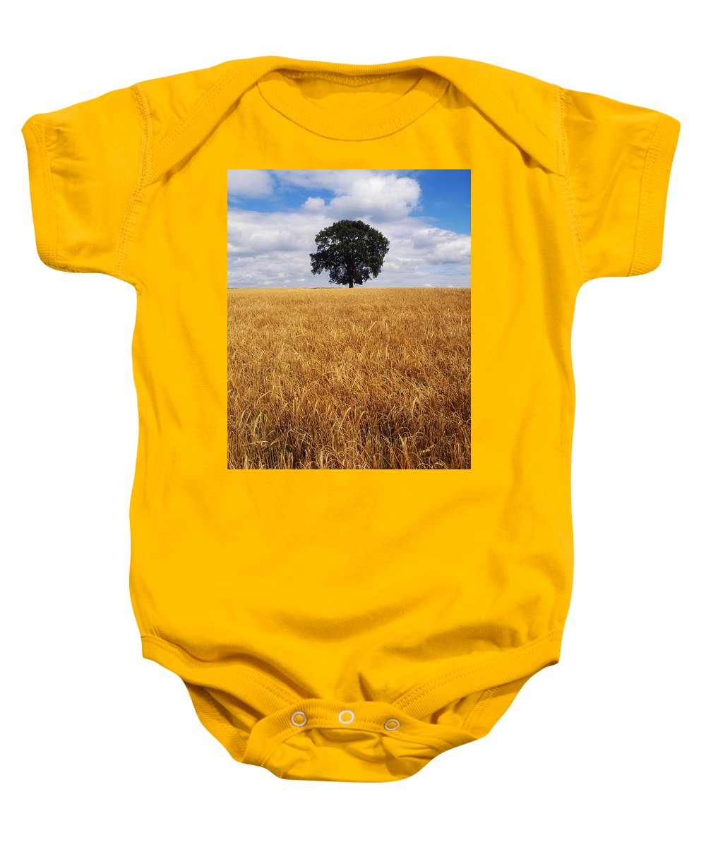 Agriculture Baby Onesie featuring the photograph Ireland, Barley Field With Oak Tree by The Irish Image Collection