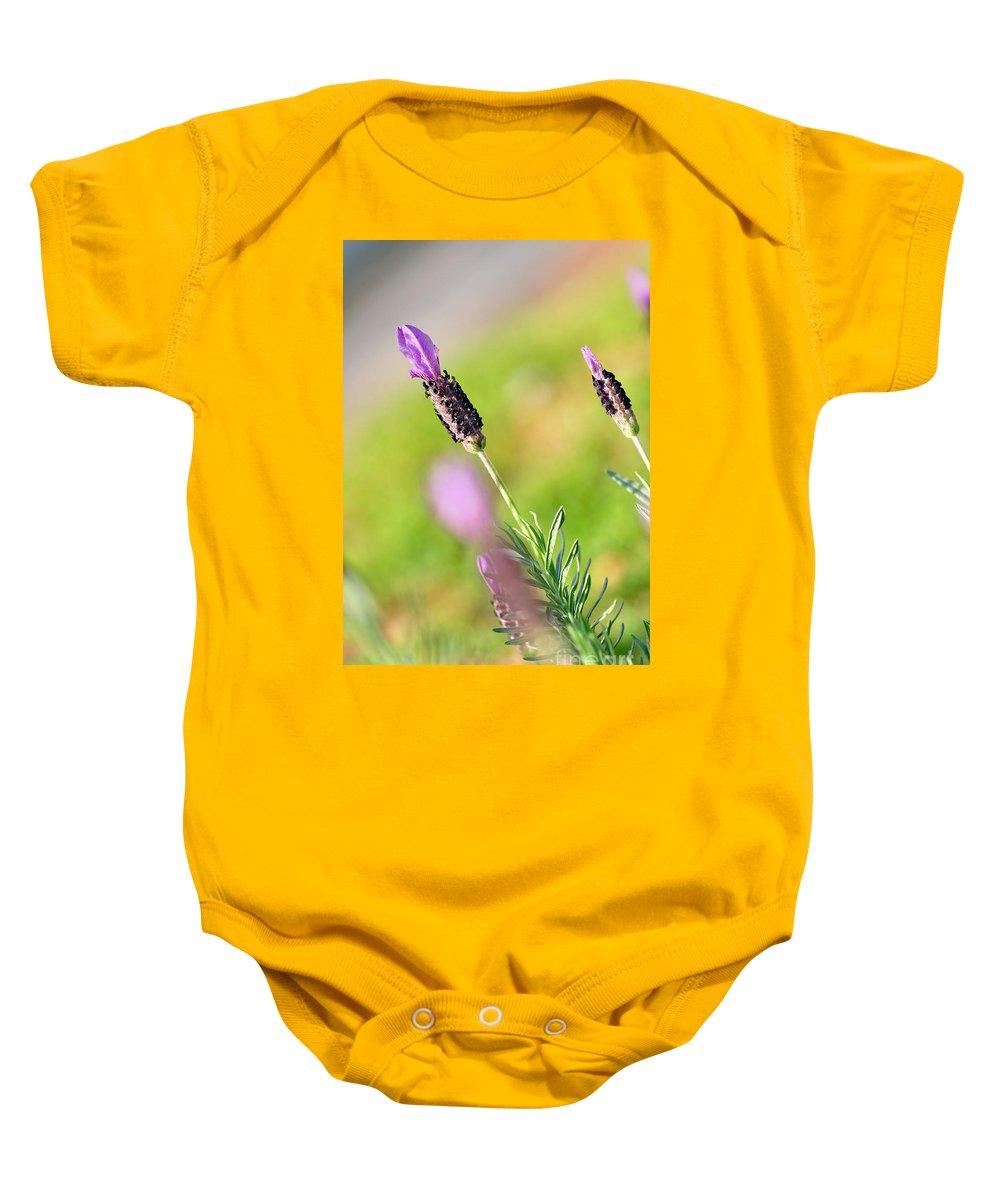 Lavender In The Sun Baby Onesie featuring the photograph Lavender In The Sun by Kaye Menner