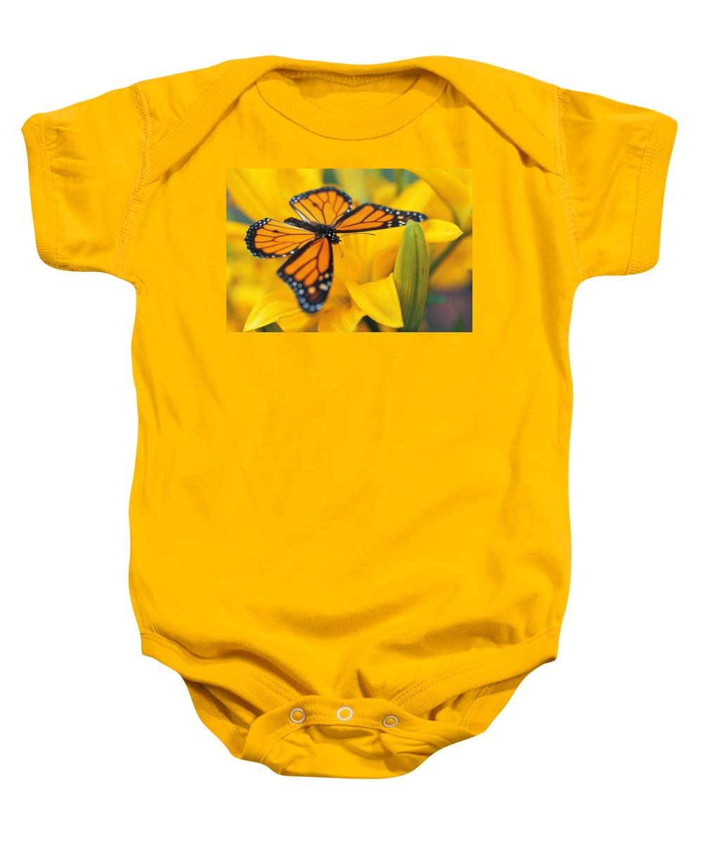 Beautiful Baby Onesie featuring the photograph Monarch Butterfly On Flower by Don Hammond