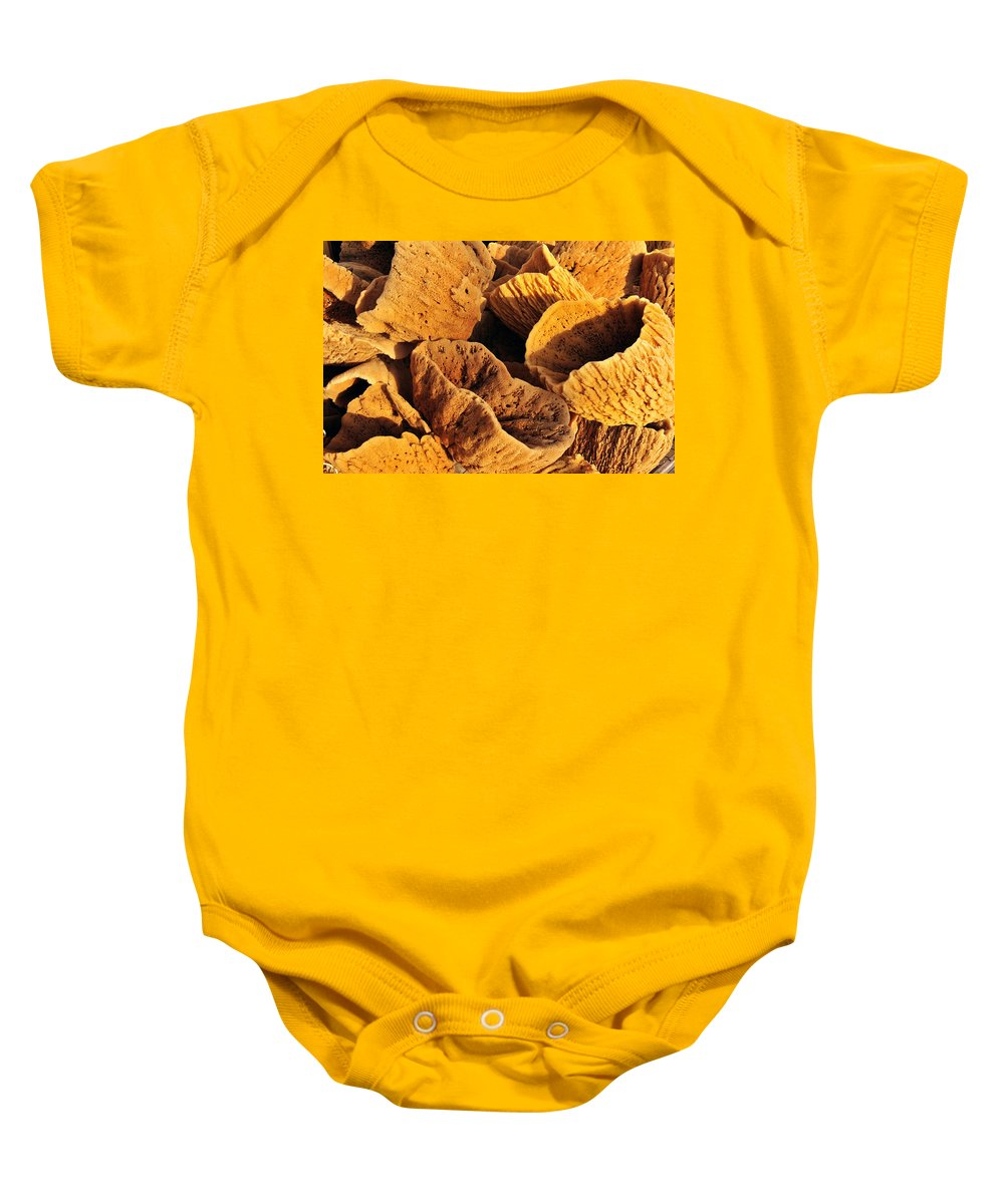 Natural Sponges Baby Onesie featuring the photograph Natural Sponges by David Lee Thompson