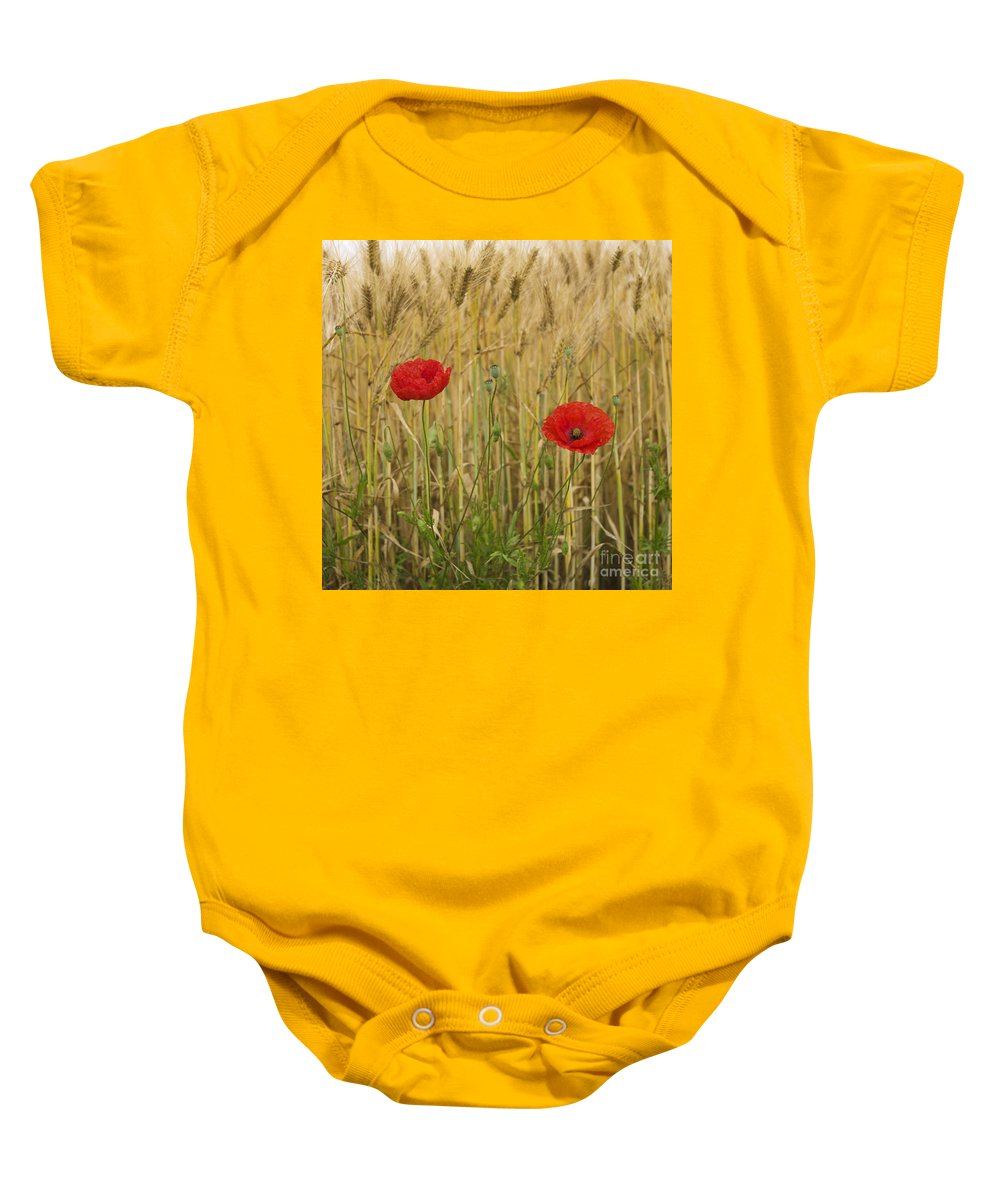 Vulgare Baby Onesie featuring the photograph Poppies In A Field Of Barley by Bernard Jaubert