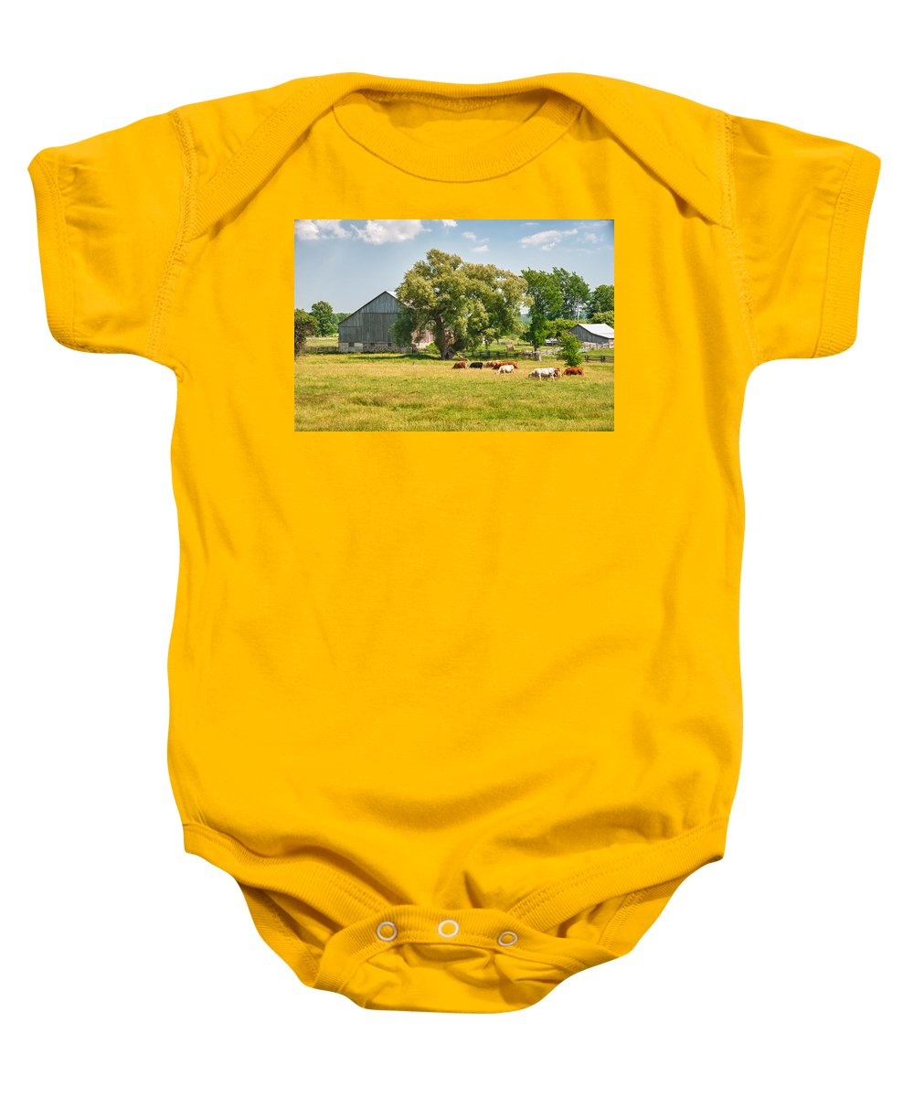 Barn Baby Onesie featuring the photograph Reive Blvd Barn 15059c by Guy Whiteley