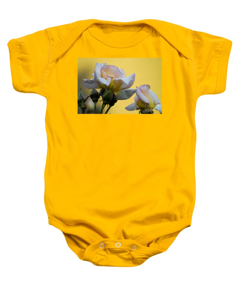 Rose Baby Onesie featuring the photograph Rose Flower Series 3 by Heiko Koehrer-Wagner