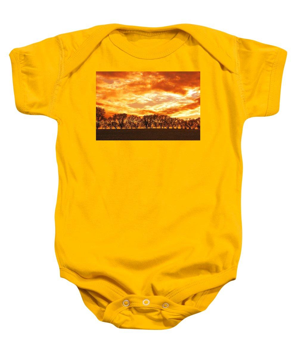 Canada Baby Onesie featuring the photograph Row Of Trees by Dean Muz