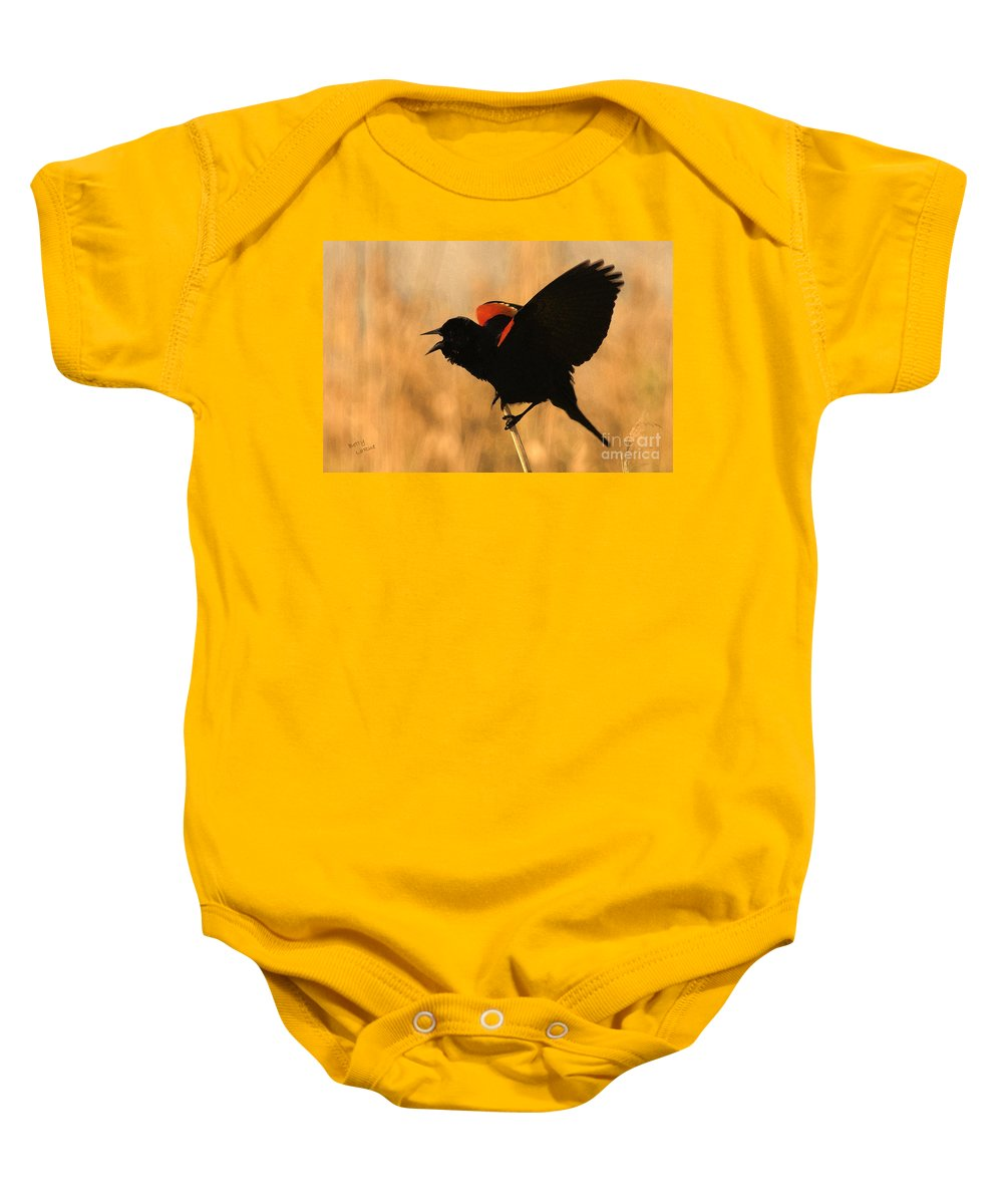 Red-winged Blackbird Baby Onesie featuring the photograph Singing At Sunset by Betty LaRue