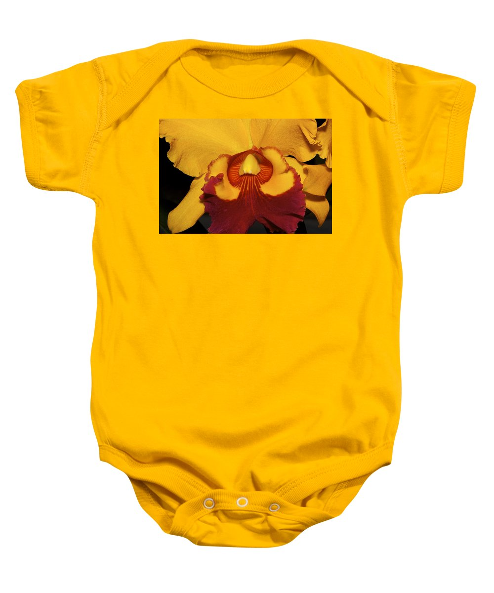 Orchid Baby Onesie featuring the photograph Sunny Yellow Orchid by Phyllis Denton