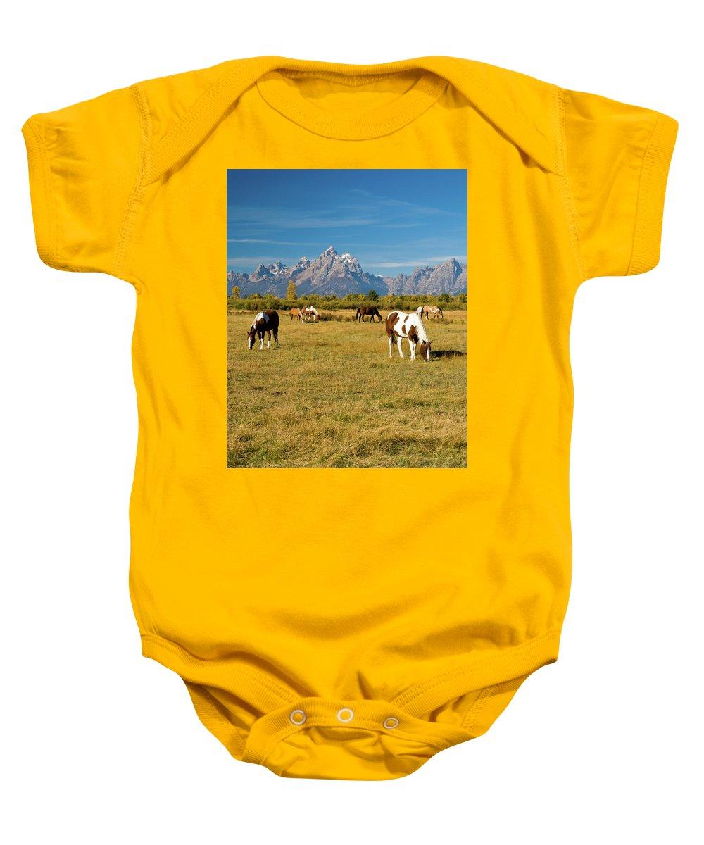 Grand Teton Baby Onesie featuring the photograph Teton Horses by Steve Stuller