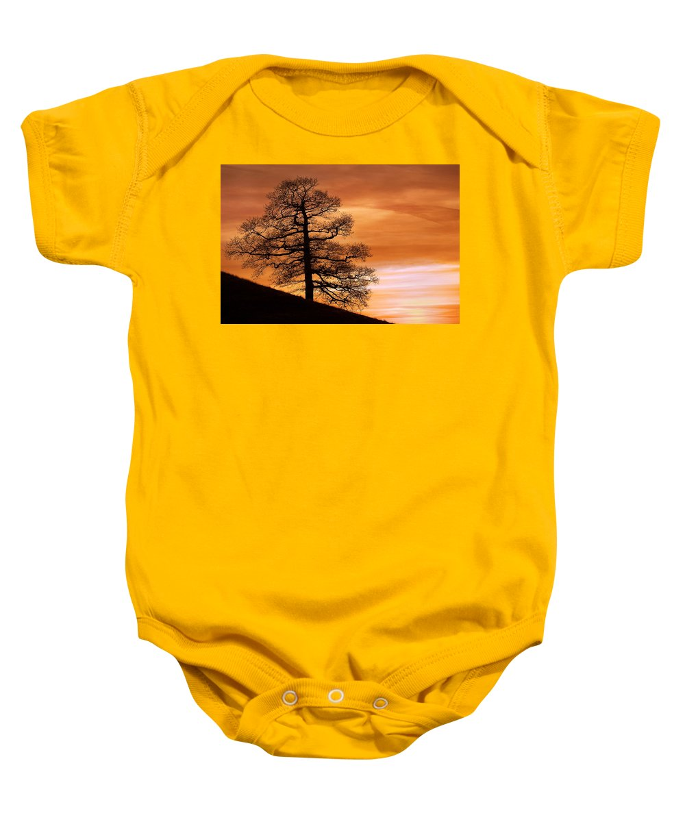 Clouds Baby Onesie featuring the photograph Tree Against A Sunset Sky by Chris Upton
