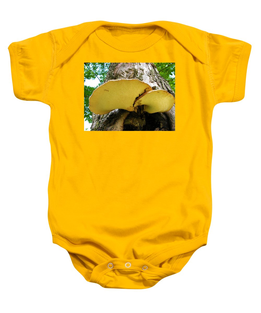 Maple Tree Fungus Baby Onesie featuring the photograph Tree Fungus 2 by Sherman Perry