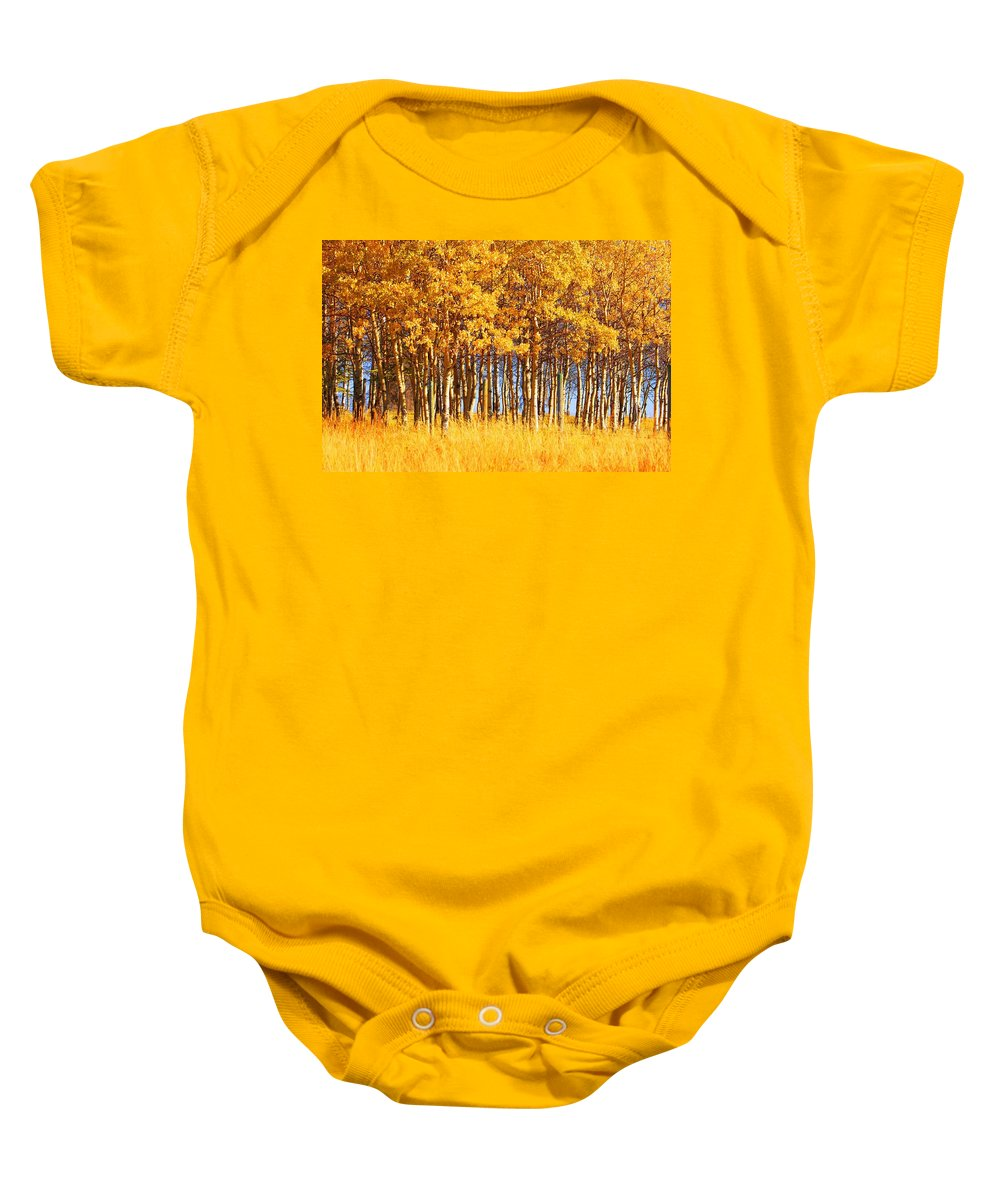 Autumn Baby Onesie featuring the photograph Trees In Autumn by Don Hammond