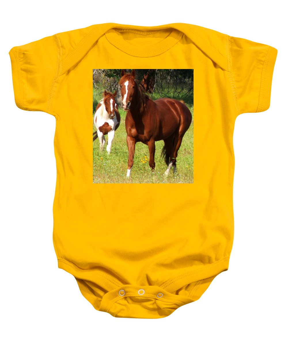 Two Horses Summer Baby Onesie featuring the photograph Two Horses In Summer by Cherokee Blue