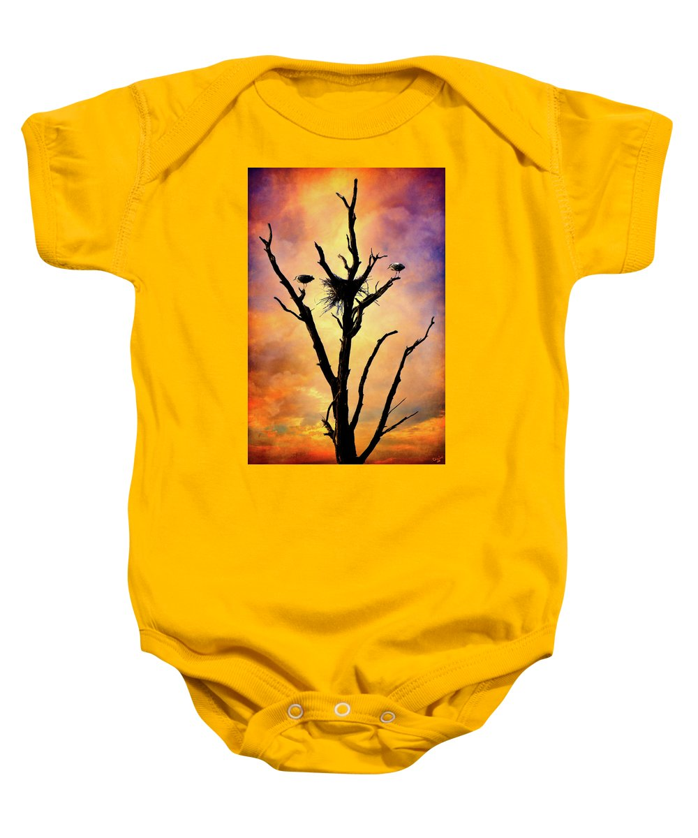 Birds Baby Onesie featuring the photograph Westward Watch by Chris Lord