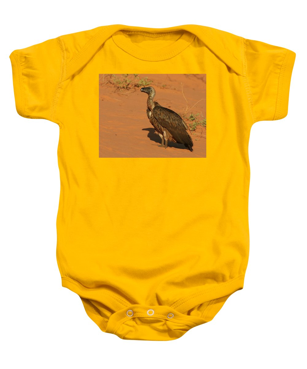 Vulture Baby Onesie featuring the photograph White-backed Vulture by Bruce J Robinson